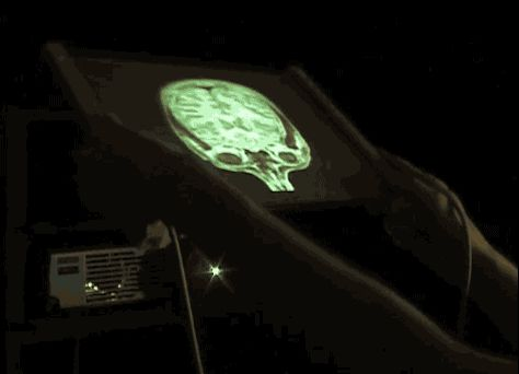 Projection mapping a brain onto a flexible rear projection screen.