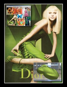 Virtual Mood Board For Selecting Parameters to BRDF Color (Photo of Jessica Stam by Craig McDean for Dior)